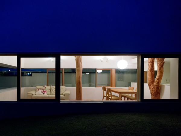 By Night  Contemporary Home in Japan Integrating Real Trees in The Structure