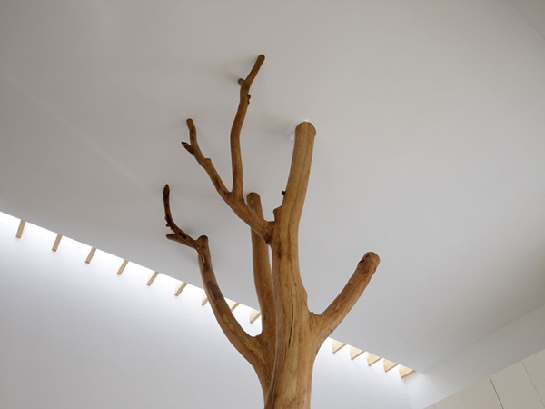Ceiling Integration Contemporary Home in Japan Integrating Real Trees in The Structure