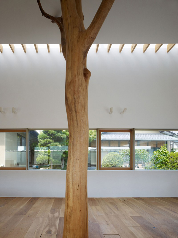 Tree Core of The Room Contemporary Home in Japan Integrating Real Trees in The Structure